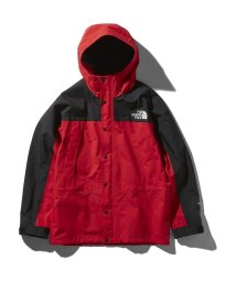 THE NORTH FACE/ノースフェイス/メンズ/Mountain Light Jacket/501980303