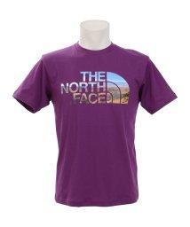 THE NORTH FACE/ノースフェイス/メンズ/S/S HALF DOME SKY/501980446
