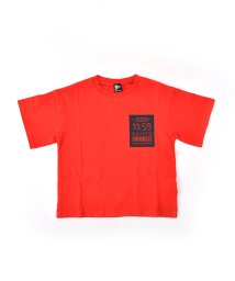 RAD CUSTOM/天竺デジタルプリントTシャツ/501926571
