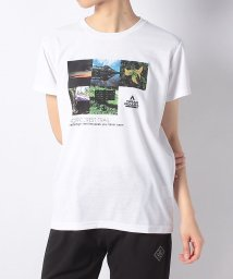 TARAS BOULBA/タラスブルバ/レディス/PHOTO Tシャツ/501990004