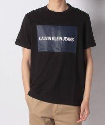 CALVIN KLEIN/【CALVIN KLEIN】Tシャツ/501985356