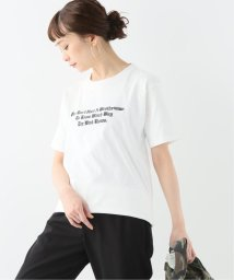 JOURNAL STANDARD relume/【SNOW PEAK/スノーピーク】TYPOGRAPHICAL TEE 4:Tシャツ/501996352