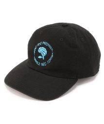 LHP/KaneZ/ケインズ/BRAIN ROSE CAP/501998616