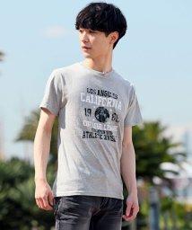 TopIsm/大きいサイズの綿100%アメカジ半袖Tシャツ/502008738