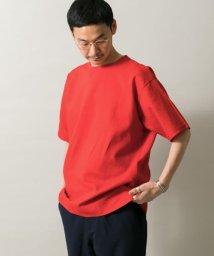 ITEMS URBANRESEARCH/リネンTシャツ/502020767