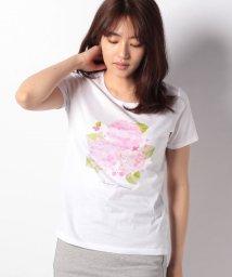 MADAM JOCONDE/【洗える】オリジナルプリント/コットン天竺Tシャツ/502011122