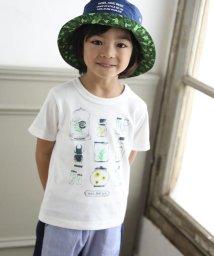 Noeil aime BeBe/【カタログ掲載】シャドーボーダーインセクトTシャツ/501983057