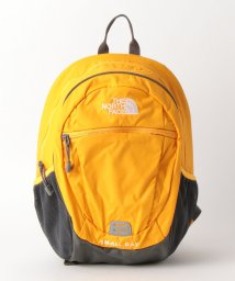 green label relaxing (Kids)/◆THE NORTH FACE(ザノースフェイス)  SmallDay 15L/502014267
