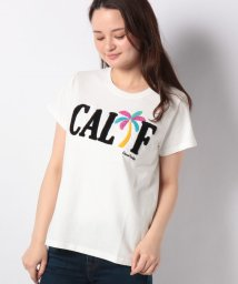 Ocean Pacific/レディスTシャツ/500998776