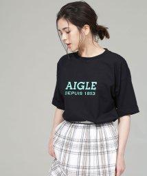 nano・universe/AIGLE/別注ロゴTシャツ/502019462