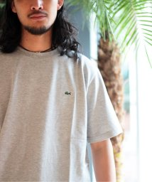 JOURNAL STANDARD/LACOSTE / ラコステ : COTTON PIQUE CN-Tシャツ/502040679