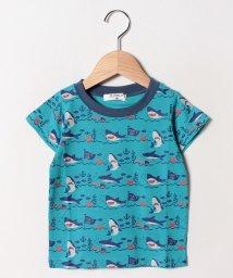 A-MACH/サメ半袖Tシャツ/502033101