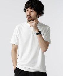 nano・universe/【MAGASEEK/dfashion限定】別注ショートリングパイルヘンリーTシャツ/502044191