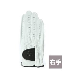 IGNIO/イグニオ IGNIO ゴルフグローブ IG-1G1036GG ホワイト/502126294