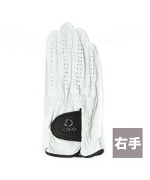 IGNIO/イグニオ IGNIO ゴルフグローブ IG-1G1036GG ホワイト【右手用】/502126331