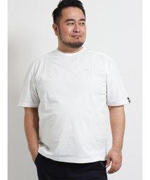 GRAND-BACK/【大きいサイズ】バラシ ミラノ/barassi MILANO 異素材切替クルーネック半袖Tシャツ/502249683