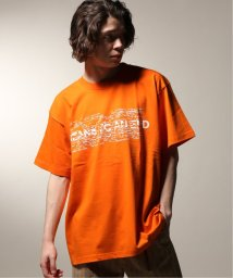 JOURNAL STANDARD relume Men's/MEANSWHILE/ミーンズワイル  Hidden Print Tee x Ray Masaki/502252717