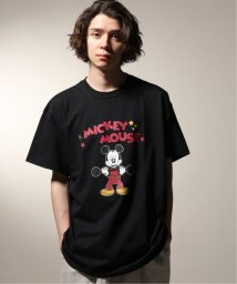 JOURNAL STANDARD relume Men's/PIG&ROOSTER / ピッグ&ルースター  MICKEY T/502252719