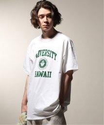JOURNAL STANDARD relume Men's/PIG&ROOSTER / ピッグ&ルースター  UNIVERSITY OF HAWAII T/502252720