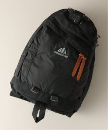 JOURNAL STANDARD/GREGORY / グレゴリー: DAY PACK/502255523
