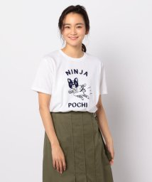 POCHITAMA LAND/NINJA POCHI Tシャツ/502040882