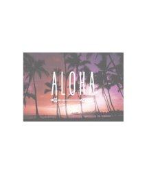 KAHIKO/◆プチプラ 【kahiko】ハワイアンポストカード その他12/502143521