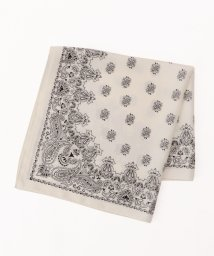 archives/paisley pattern scarf/502266196