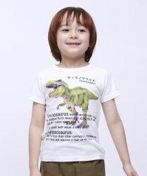 RUGGEDWORKS/ティラノザウルス半袖TEE                          /502127034