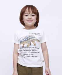 RUGGEDWORKS/アンキロサウルス半袖TEE                          /502127036