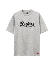 MAC HOUSE(men)/Dickies チェーン刺繍ビッグTシャツ 9274-0724/502271142