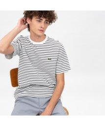LACOSTE Mens/鹿の子地ボーダーTシャツ/501930256