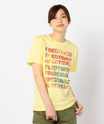 FREDYMAC/ラグマットマーブルTシャツ/502269622