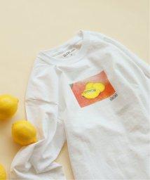 SLOBE IENA/《追加》SLOBE citron. × asami nobuoka コラボフォトTシャツ◆/502286352