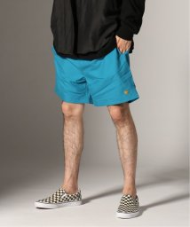 JOURNAL STANDARD/CARHARTT WIP / カーハートWIP :  CHASE SWIM TRUNK/502287015