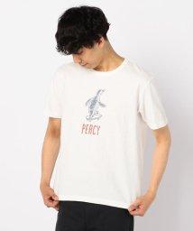 GLOSTER/【BARNS/バーンズ】別注吊り編みTシャツ (PERCY)/502269628