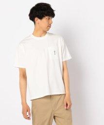 GLOSTER/【Jams/ジャムス】デイブ刺しゅう Tシャツ/502269637