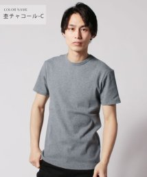 THE CASUAL/(バイヤーズセレクト)Buyer's Select スパンテレコ半袖Vネック/クルーネックカットソー/502288692
