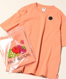 JOURNAL STANDARD relume Men's/FRUIT OF THE LOOM×relume / 別注 EMBROIDERY Tシャツ/502289507