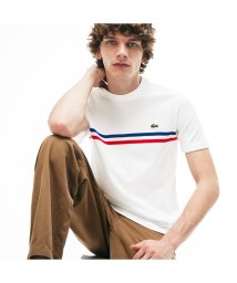 LACOSTE Mens/『MADE IN FRANCE』ボーダー鹿の子地クルーネックTシャツ/502292106