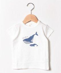 LAGOM/クジラプリントTシャツ/502280856