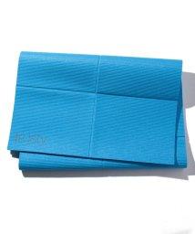 VacaSta Swimwear/【RUSTY】折り畳みヨガマット/502285491