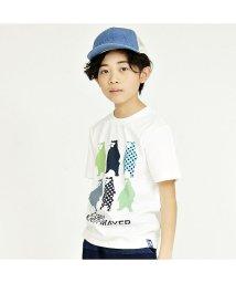 KRIFF MAYER(Kids)/くまプリントTEE(130~160cm)/502288115