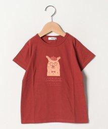 koe kids/アニマル半袖Tシャツ/502297118