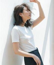 NIJYUSANKU/【マガジン掲載】ALBINI コットン カットソー(検索番号K56)/502298314