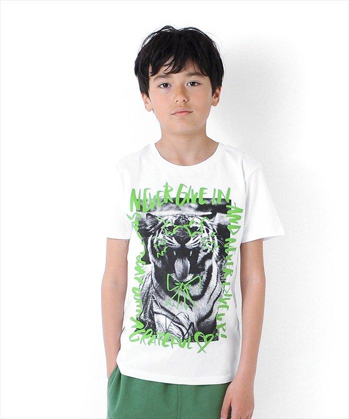 グラソス タイガーフォト半袖Tシャツ レディース ホワイト 160cm 【GLAZOS】