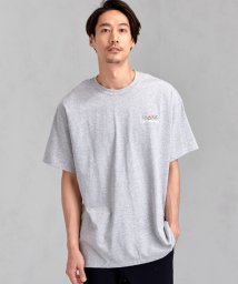 green label relaxing/[ナナナナイチエム] SC★771m 刺繍 ish-Tee / Tシャツ/502313095