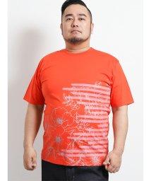 GRAND-BACK/【大きいサイズ】ヘンリーバル/HENRY VAL 天竺プリントデザインネック半袖Tシャツ/502315027
