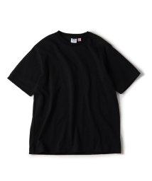 SHIPS MEN/PANNILL(パニール): アメリカ製 クルーネック Tシャツ/502318260