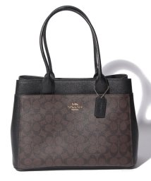 COACH/OUTLET WOMAN TOTE/502302873