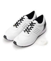 adabat/スパイクレスゴルフシューズ メンズ/502325821
